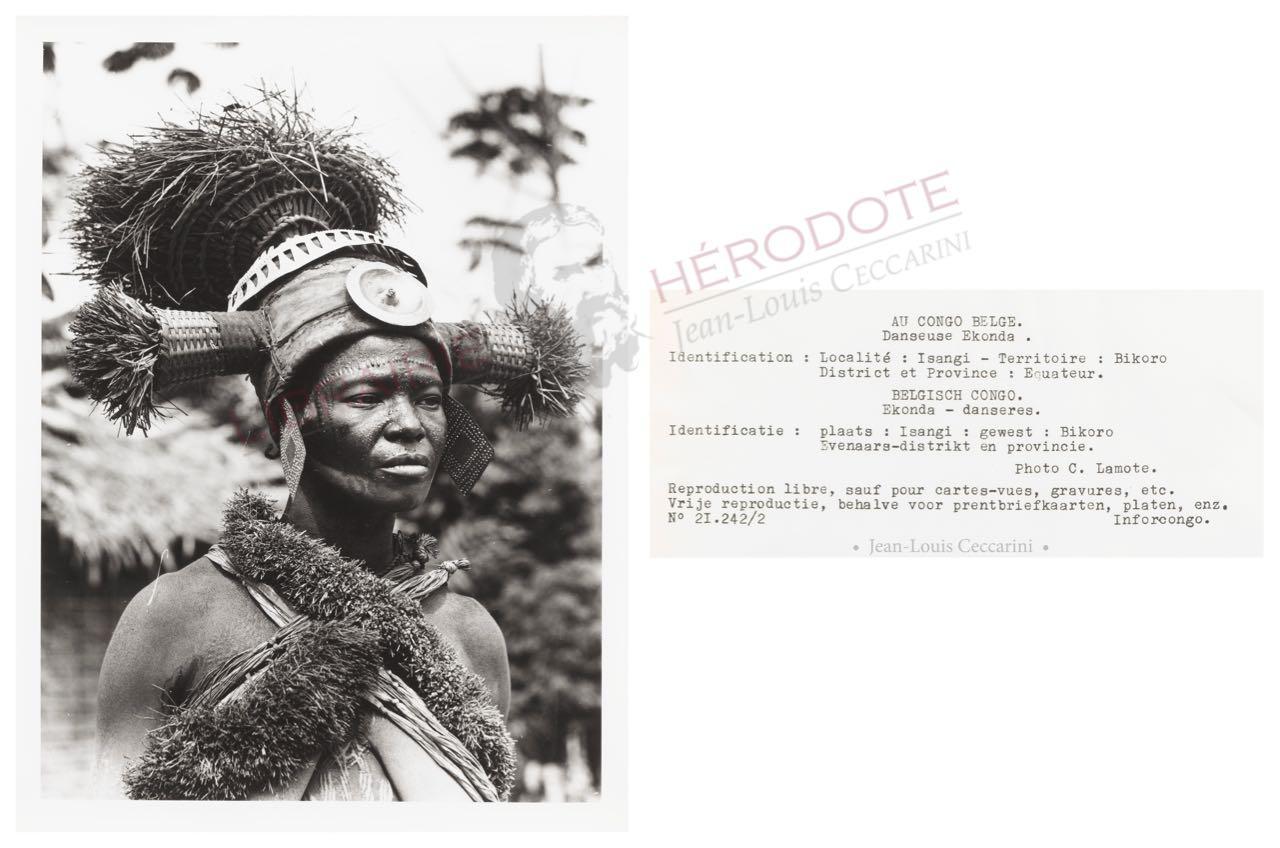 Congo 15 copyright