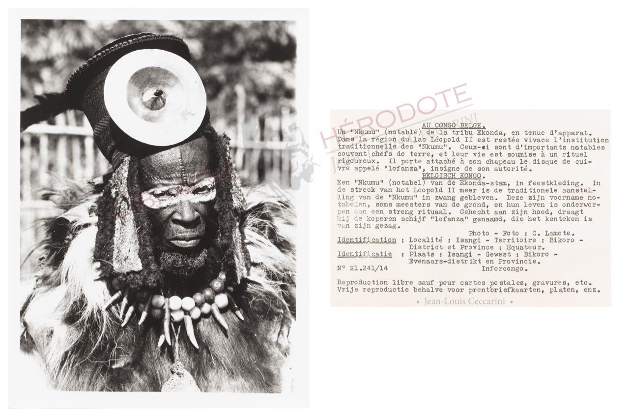 Congo 16 copyright