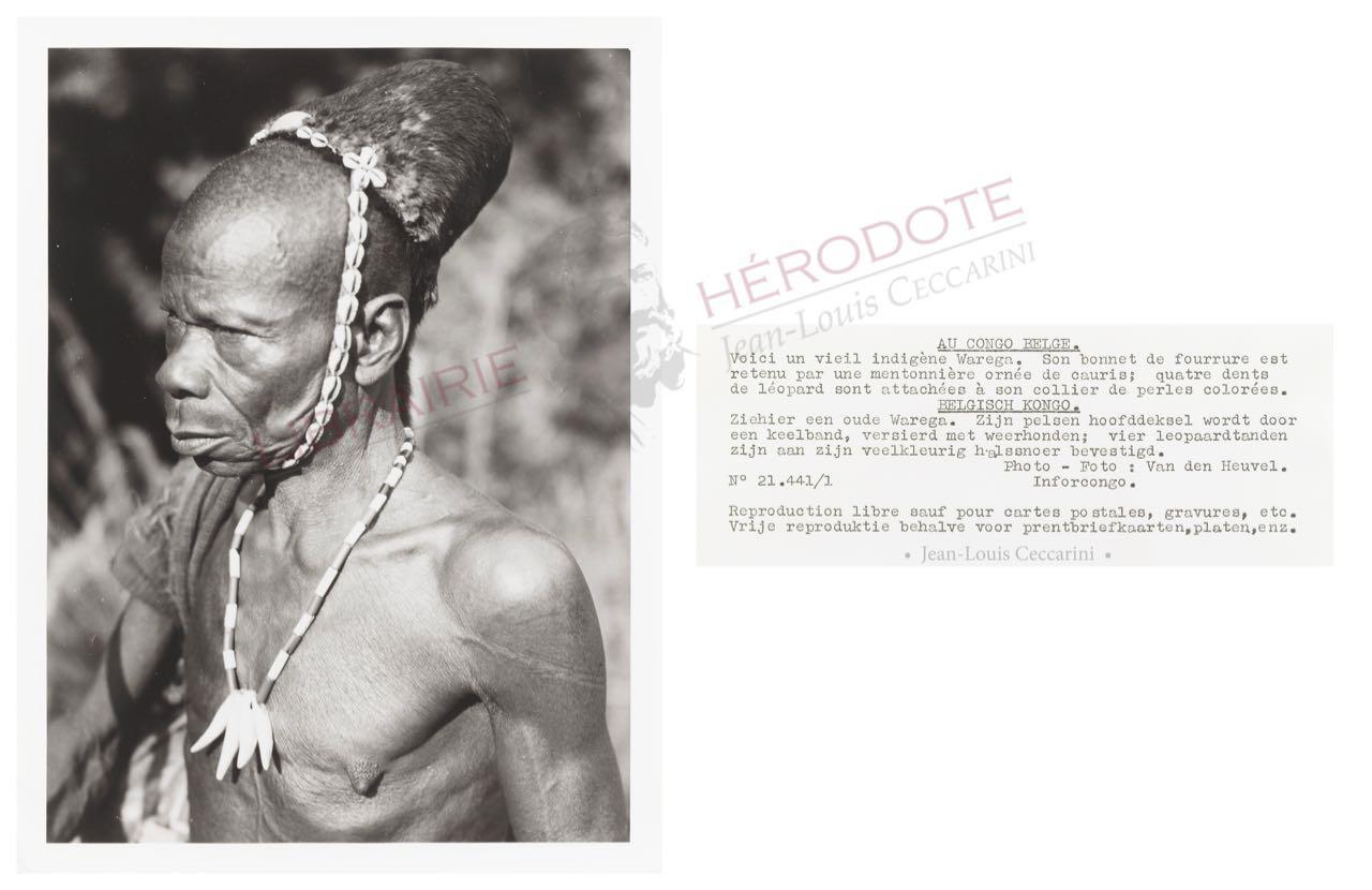 Congo 17 copyright