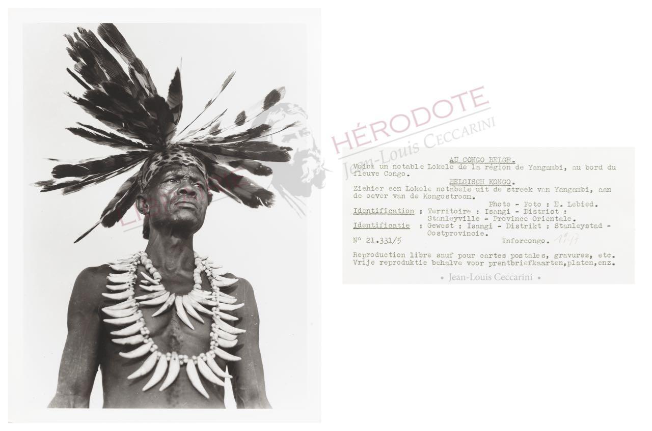 Congo 19 copyright