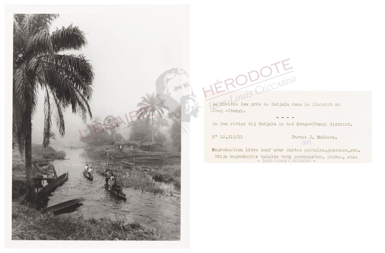 Congo 23 copyright