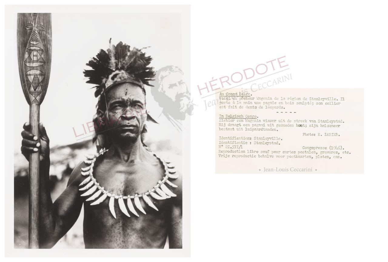 Congo 24 copyright