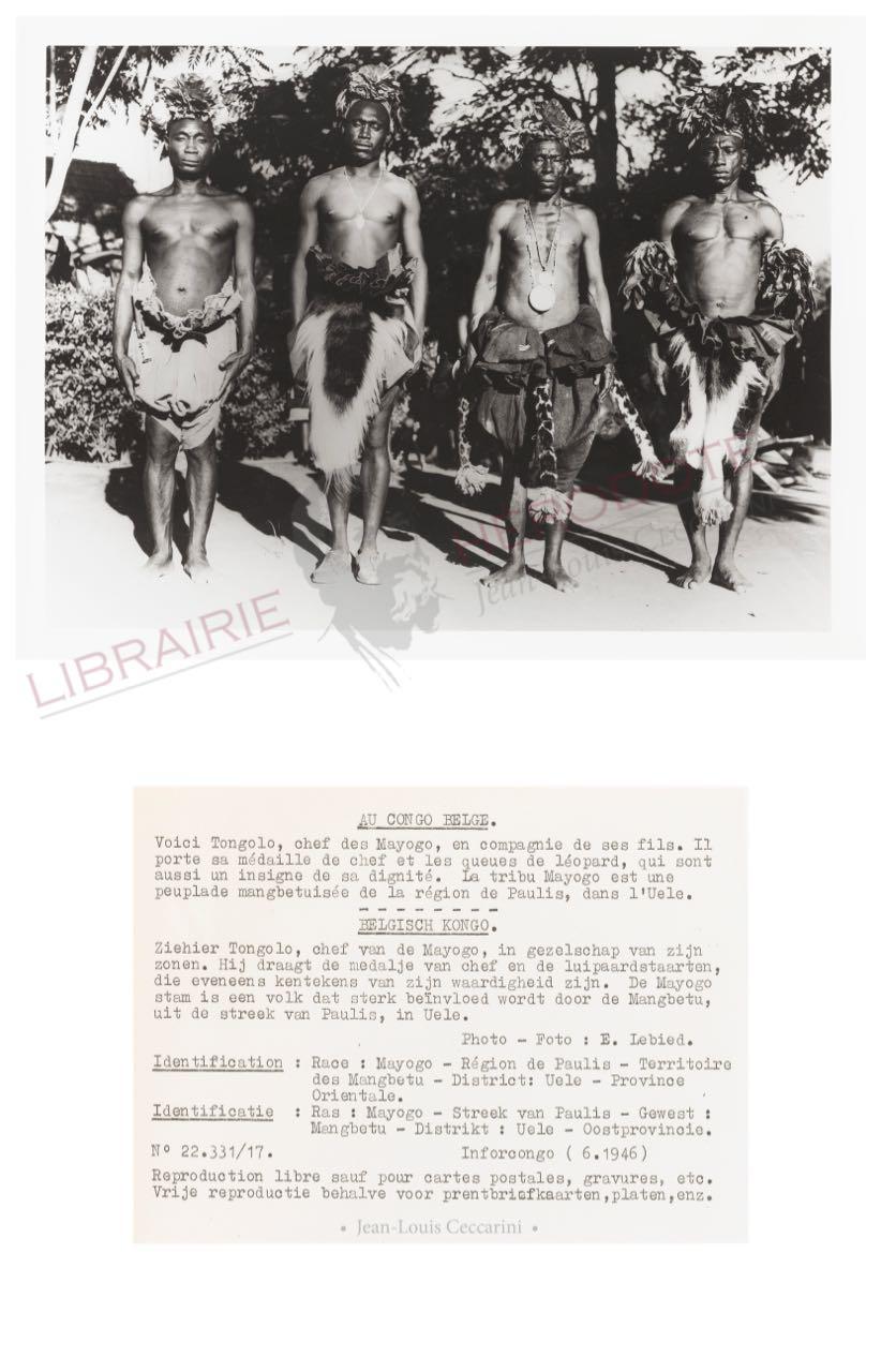 Congo 26 copyright