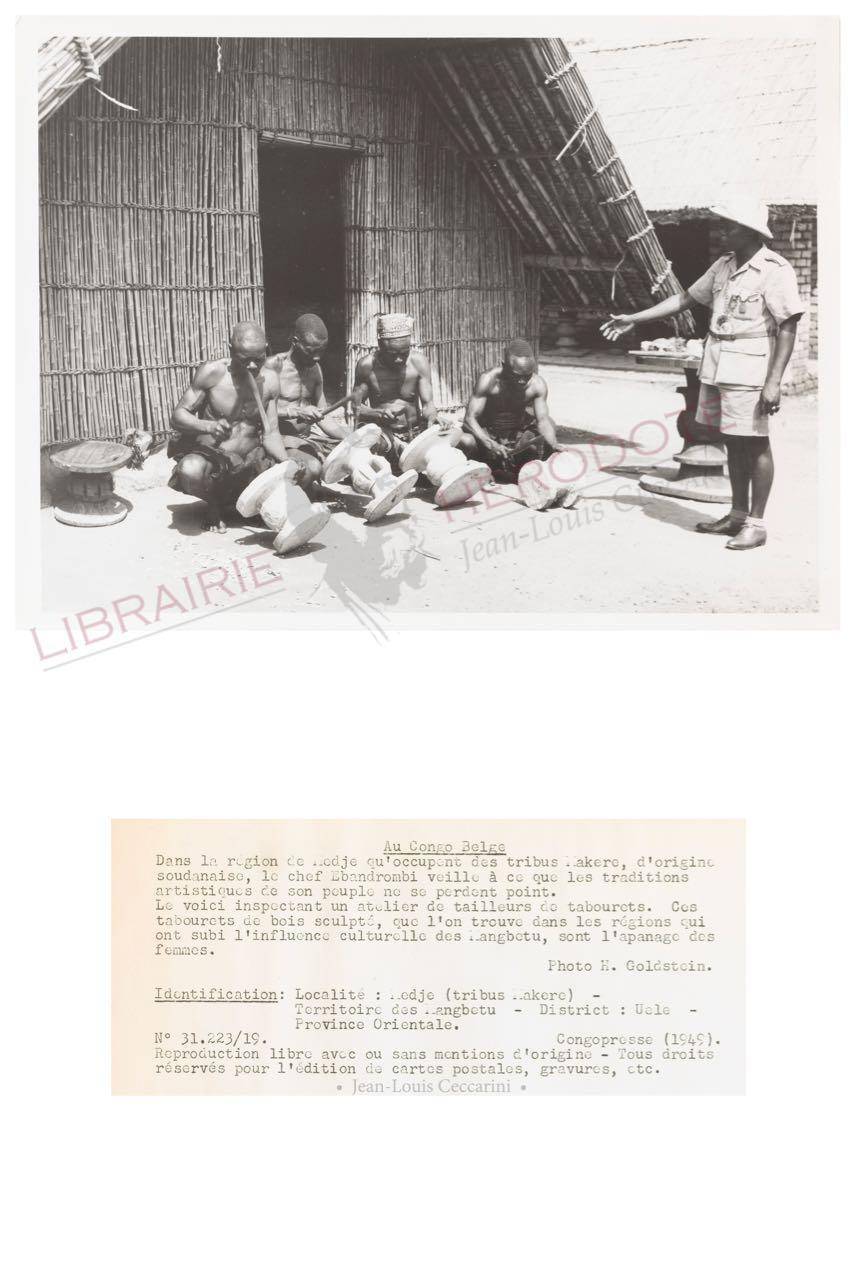 Congo 29 copyright