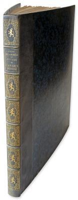 Léon de Laborde : Voyage de l'Arabie Pétrée