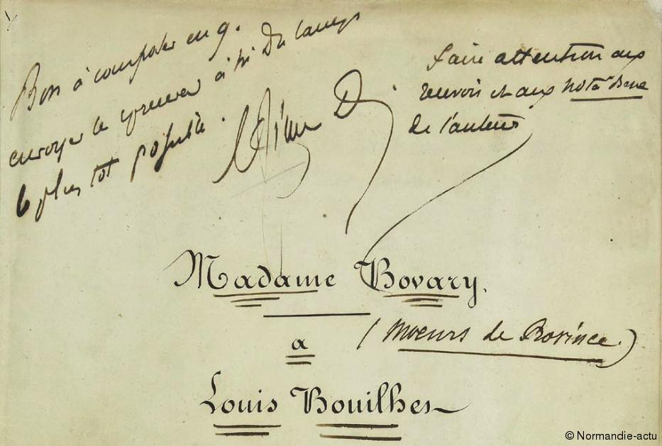 Flaubert bovary
